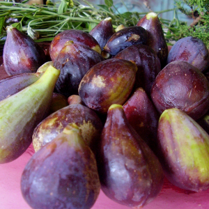 Wildharvested Figs