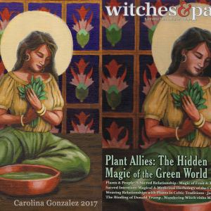 Witches & Pagans, Cover Art (2019)